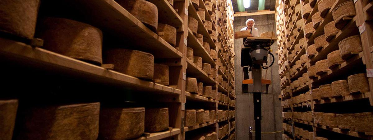 cheese aging on racks